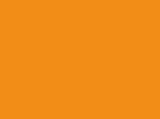 Gam màu cam